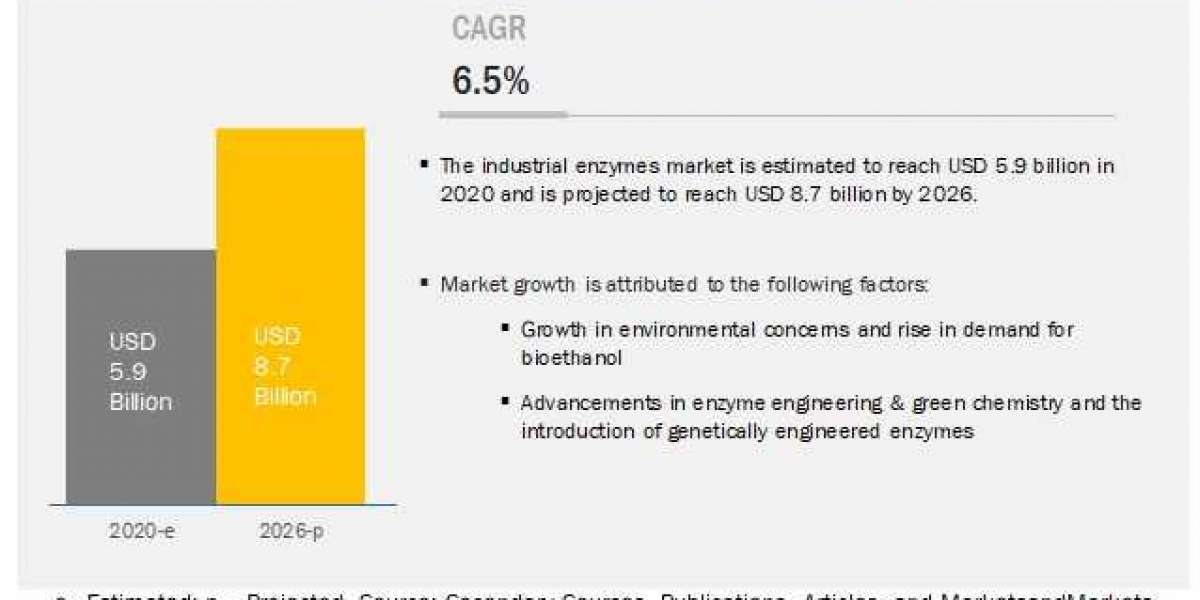 Industrial Enzymes Market: Analysis with Ongoing Trends & Developments