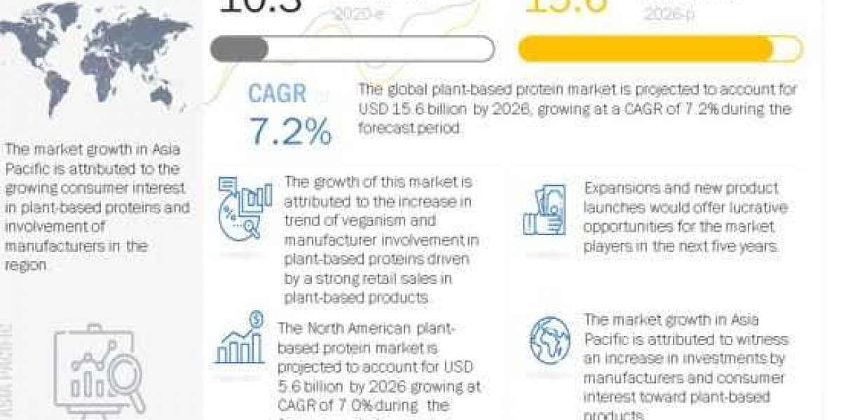 Plant-based Protein Market: Key Industry Insights, Current and Future Perspectives