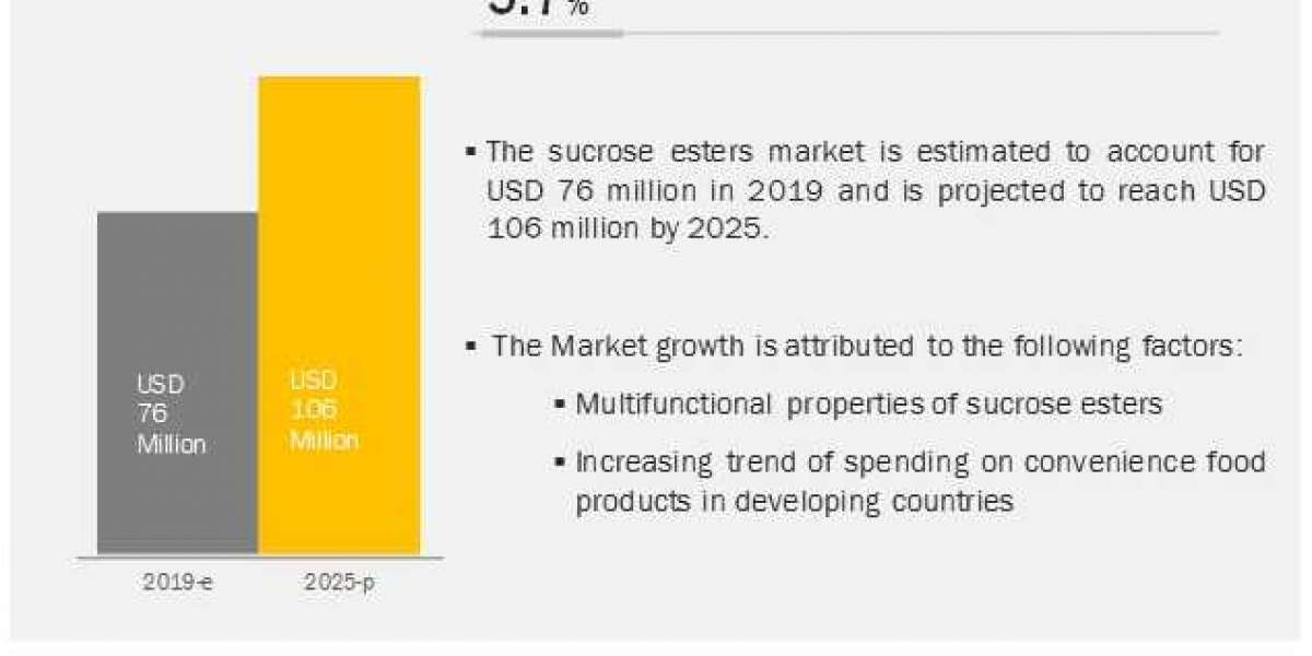 Croda International (UK) and Evonik Industries (Germany) are the Major Players in the Sucrose Esters Market