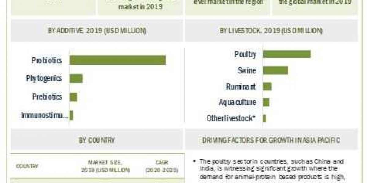 Animal Intestinal Health Market Opportunities & Chanllenges