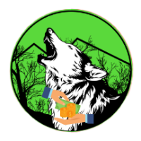 Wolf Safe Poor People price today, WSPP live marketcap, chart, and info   CoinMarketCap