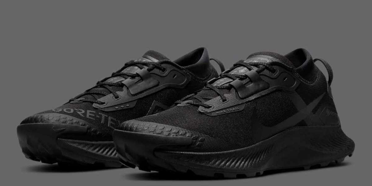 "2021 Latest Nike Pegasus Trail 3 GORE-TEX ""Black"" DC8793-001"