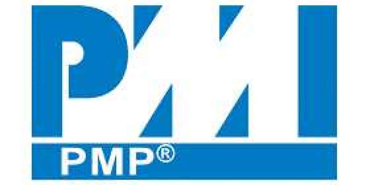 https://dumpsboss.com/certification-provider/pmi/